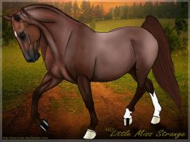 MD Little Miss Strange by wideturn