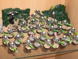 Necron Army - update by Freggelz