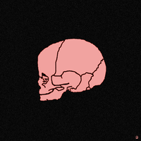 baby skull by heinpold