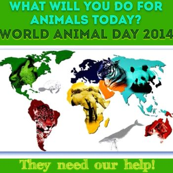World Animal Day Oct. 4, 2014 by eagleray7