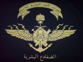 Marine Special Security Forces by saudi6666