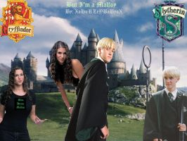 But I'm A Malfoy WP by alittlegrim