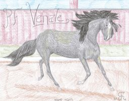 PF Venale by Niur-Tarow