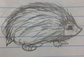 Sonic the Biologically Correct Hedgehog  sketch by Yoshi123pegasister