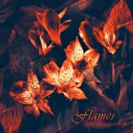 Flames by tiefel