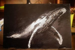 whale on laptop by SunnyPencil