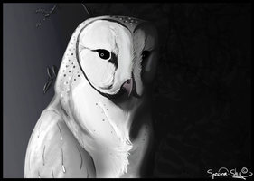 Veiled Reaper by Spectra-Sky