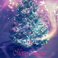 Merry Christmas by Frama