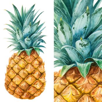 PINEAPPLE by AlexGreenArt
