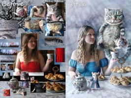 Tea-party sources by mary-petroff