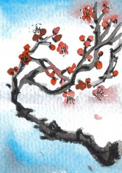 Plum Blossom ACEO Card by renadamsart
