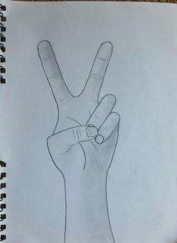 Peace Sign by EmilyMidWest