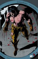 Wolverine_Origin_Color. by Troianocomics