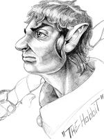 the HOBBIT by noahstormcrow