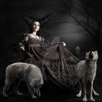 The wolf by Mayagraphic