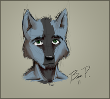 Blue Wolf Sketch by ChaserTech