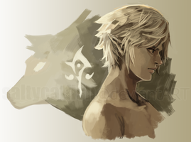 LoZ: Twilight Princess by saltycatfish