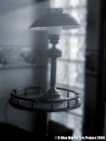Lamp Shade by vhive