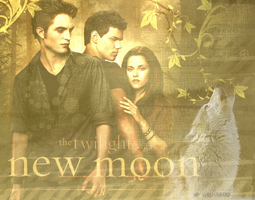 The Twilight saga: New Moon by LadyVienne