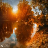 magical season by ildiko-neer