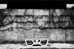 Lonely Ping Pong Table by A-spec59