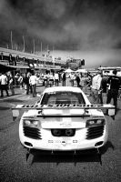 Audi R8 LMS by Vipervelocity