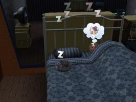 Sims 3 - Dixie and Misty by EpiclyAwesomePrussia