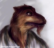 Master Splinter by EdArtGeek