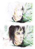 LOTR - Frodo WIPs by daiong