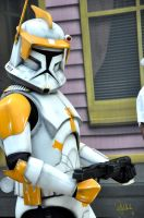 Commander Cody by Murphface