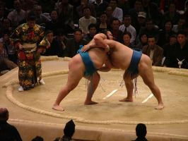 Sumo by calger459