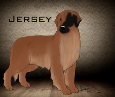 Joesse's In his steps- Jersey by joesse