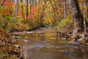 Fall Creek 1 by explicitly
