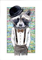 Mr raccoon by VIMENKA