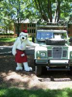 Every shepherd should drive a land rover by MrEd301