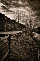 Wooden Path by Shall0wGrave