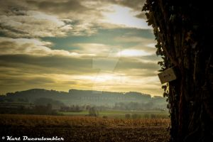 Flanders Fields - Heuvelland 1 by Riddseh