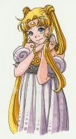 Princess Serenity by skelly-jelly