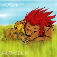 Sleeping_at_plains_Akuroku by Shadowgirl89