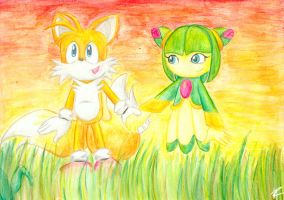 OMG Tails and Cosmo by TailsxCosmo-fans