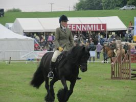 Hadleigh Show 11 by BlaneyStock