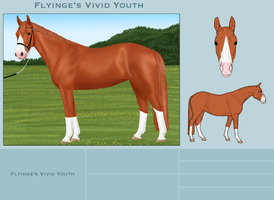 Flyinge's Vivid Youth by FamousFox