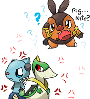 Endless Rivalry...And pignite by Kat-The-Piplup