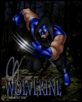 Wolverine by Cahnartist