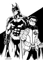 Batman and Robin 2010 by guinnessyde