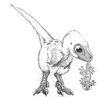 Sketch for baby velociraptor by Psithyrus