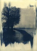 Bleak. Cyanotype print by urbantrip