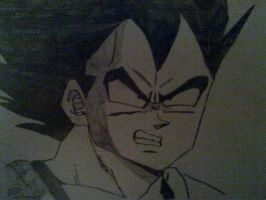Vegeta_DBZ by DBZdrawingSTANIC