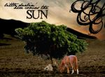 Here Comes the SUN by OliviaKaysKinetic