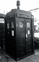 Tardis Replica ~ Europe Day 4 by Chatoyant11